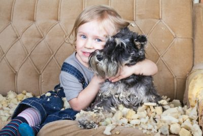 dog expert human anima bond